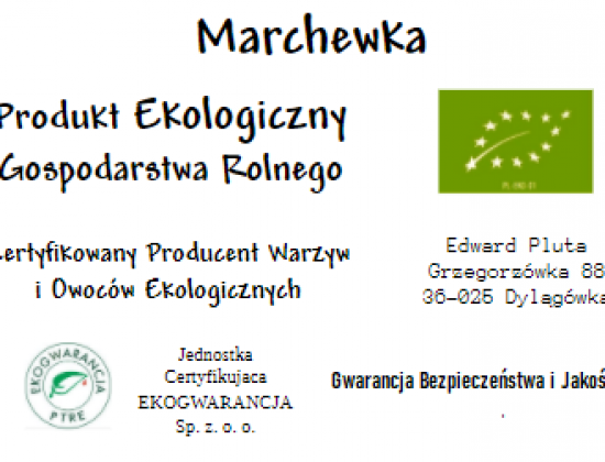 Marchewka Ekologiczna – Produkt Eko